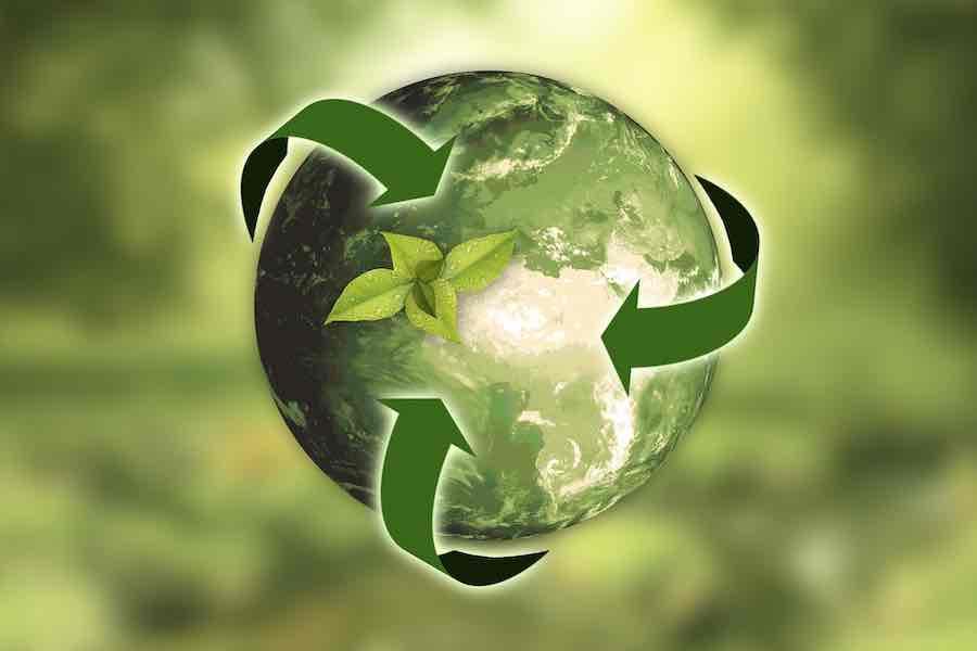Grüne Organisationen